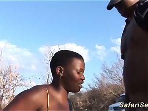 Outdoor African safari romp