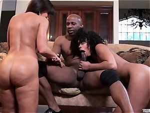 Lisa Ann and Misty Stone spit over this rigid manhood